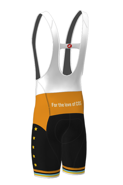 The back of the 719 Ride cycling bib shorts